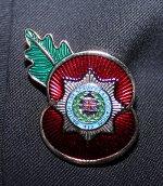 BFSA Badge_150
