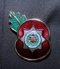 BFSA Badge_200